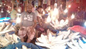 দাম কমলেও মৌলভীবাজারে হাজার দামে বিক্রি হচ্ছে প্রতি কেজি ইলিশ