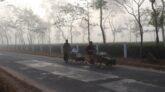 সর্বনিম্ন তাপমাত্রা বইছে চায়ের রাজধানী শ্রীমঙ্গলে
