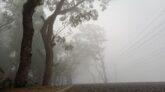 শ্রীমঙ্গলে দেশের সর্বনিম্ন তাপমাত্রা ৫.৫ ডিগ্রি সেলসিয়াস