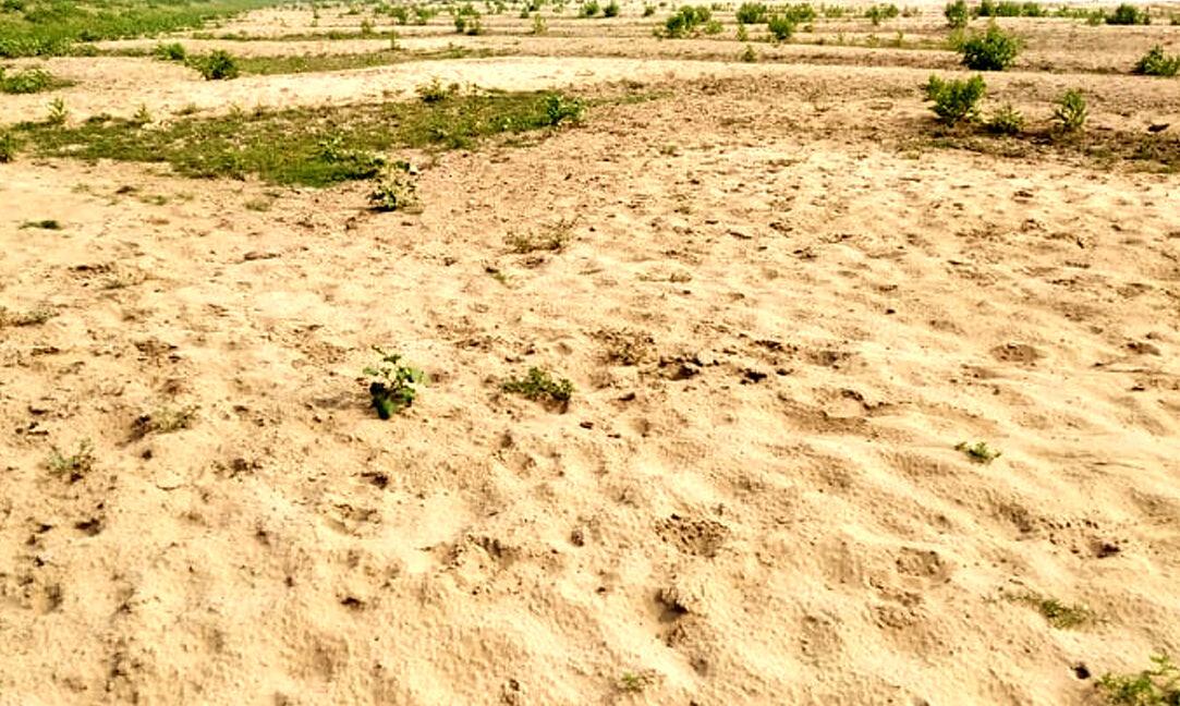 কুশিয়ারা নদীতে একের পর এক জেগে উঠছে বিশাল আয়তনের বালুচর